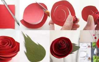Розы своими руками из бумаги видео