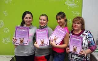 Конкурс грумеров боншери в ростове на дону
