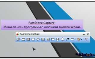 Faststone запись видео с экрана скачать