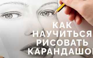 Мастер класс по рисованию карандашом для начинающих