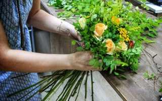 Флорист профессия обучение