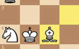 Ходы в шахматах для начинающих видео уроки