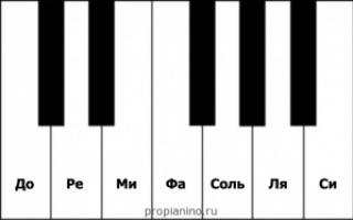 Видео урок как играть на пианино
