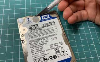 Внешний жесткий диск пищит при подключении