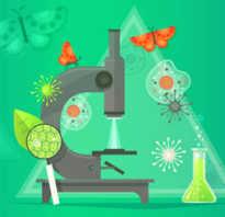 Бесплатные онлайн курсы по биологии