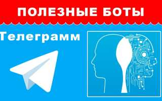 Ск бот телеграмм
