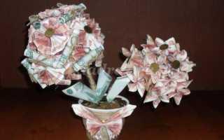 Топиарий денежное дерево своими руками мастер класс